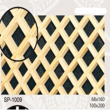 sp1009